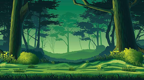 Restrictions accès bois et forêts
